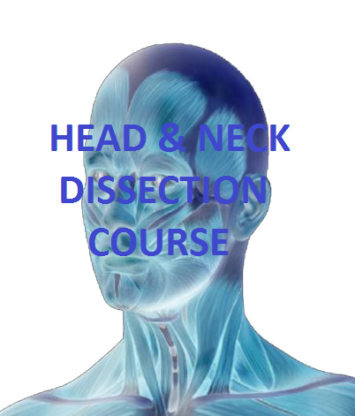 Cape Town Head and Neck Dissection Course