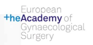 academy-logo-1