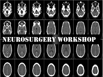 Neurosurgery Workshop