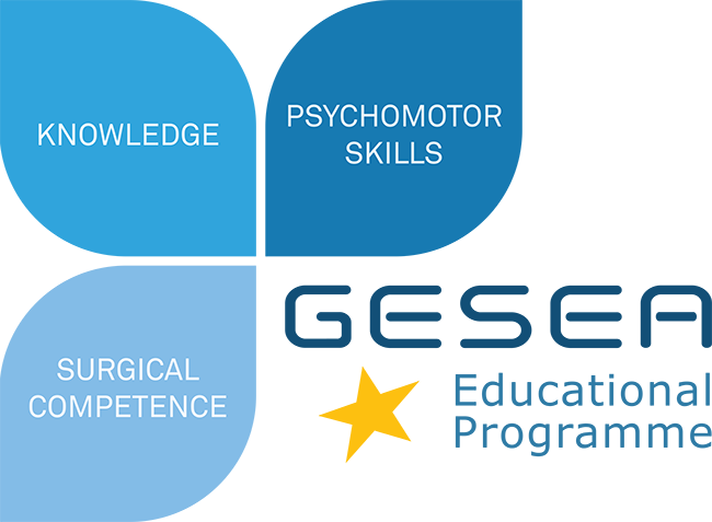 GESEA CERT2 Practical Training Course – Cape Town 20th & 21st November 2021